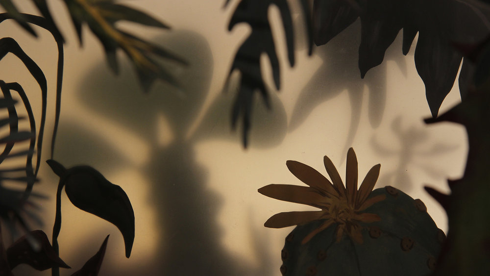 plants with shadows behind them on the wall.
