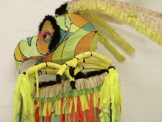photograph of a brightly coloured bird costume