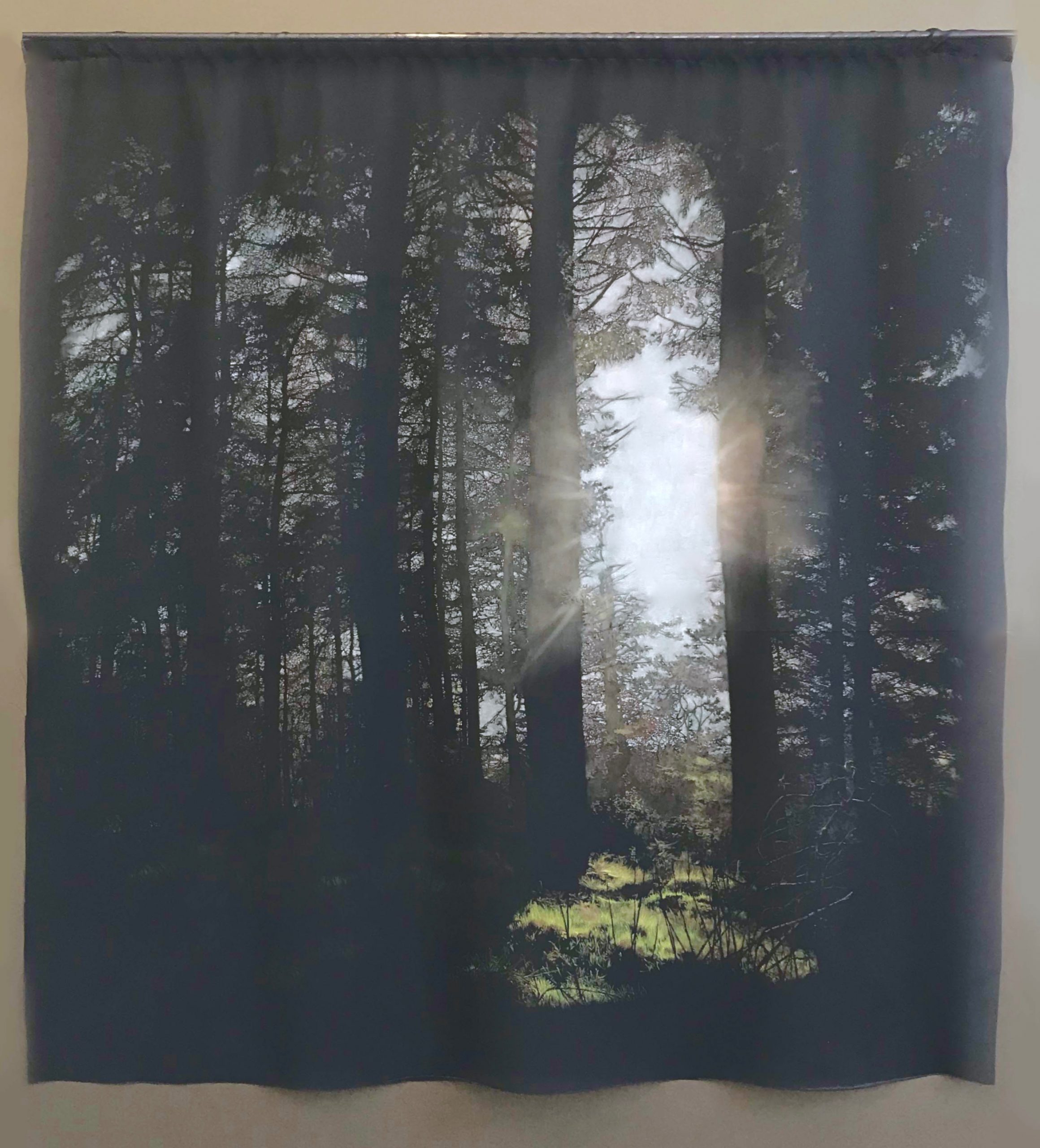 Sian Smith's painting 'momnet' on chiffon depicting light shining through a forest.